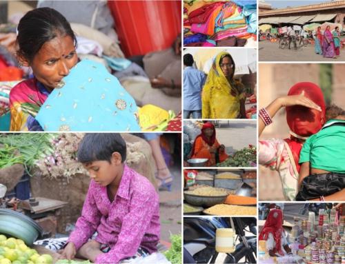 INDIA – 12 dagen intens beleven